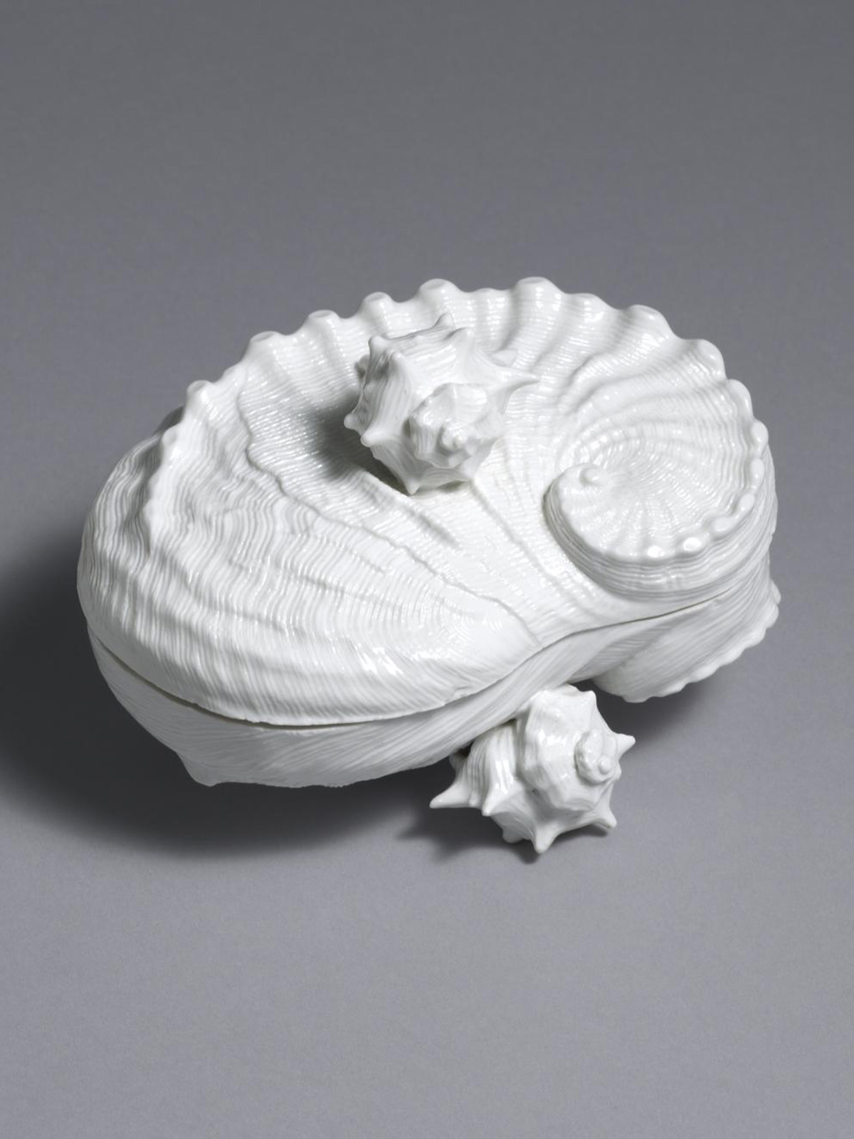 Nymphenburg Shell Butter Box and Cover